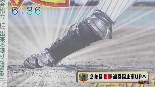 2015-0325-11