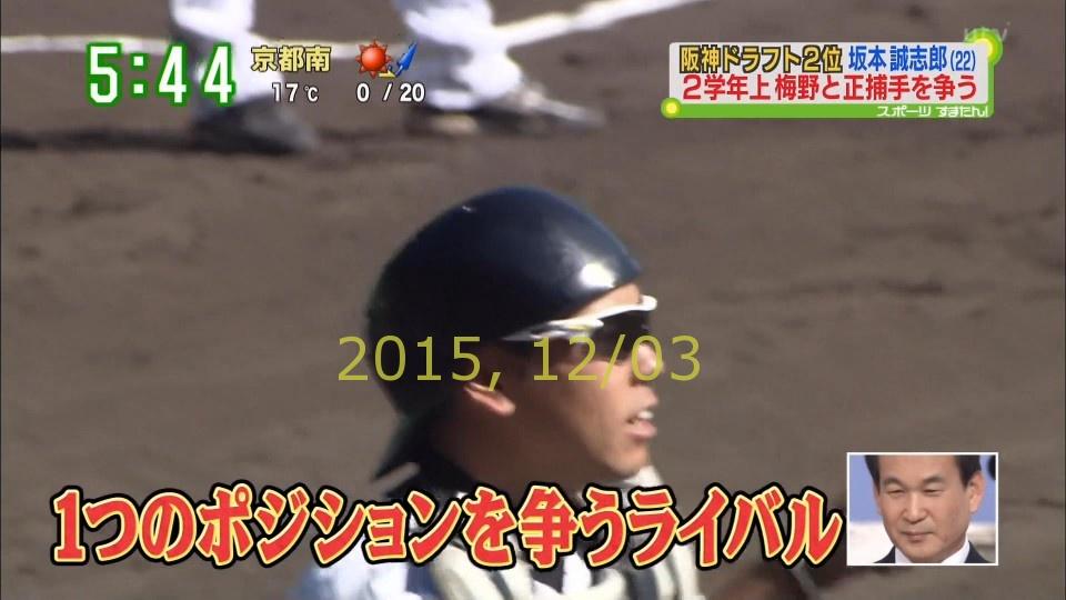 2015-1203-suma-28