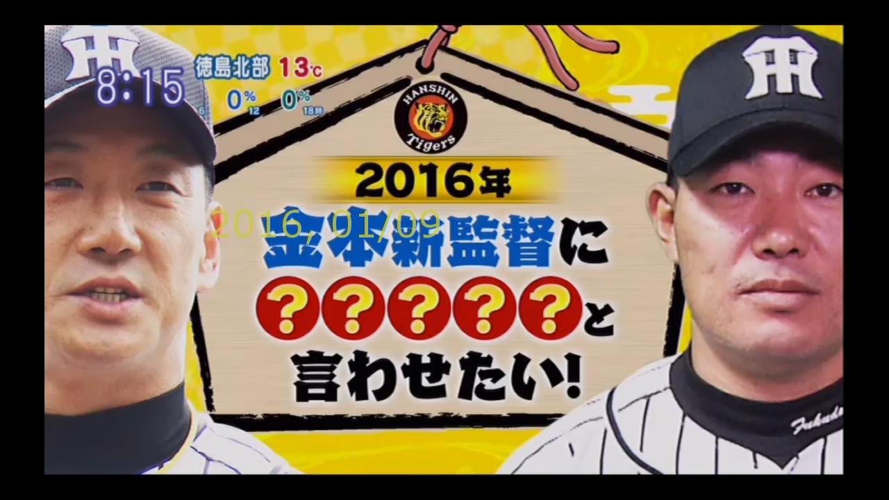 2016-0110-puipui-07