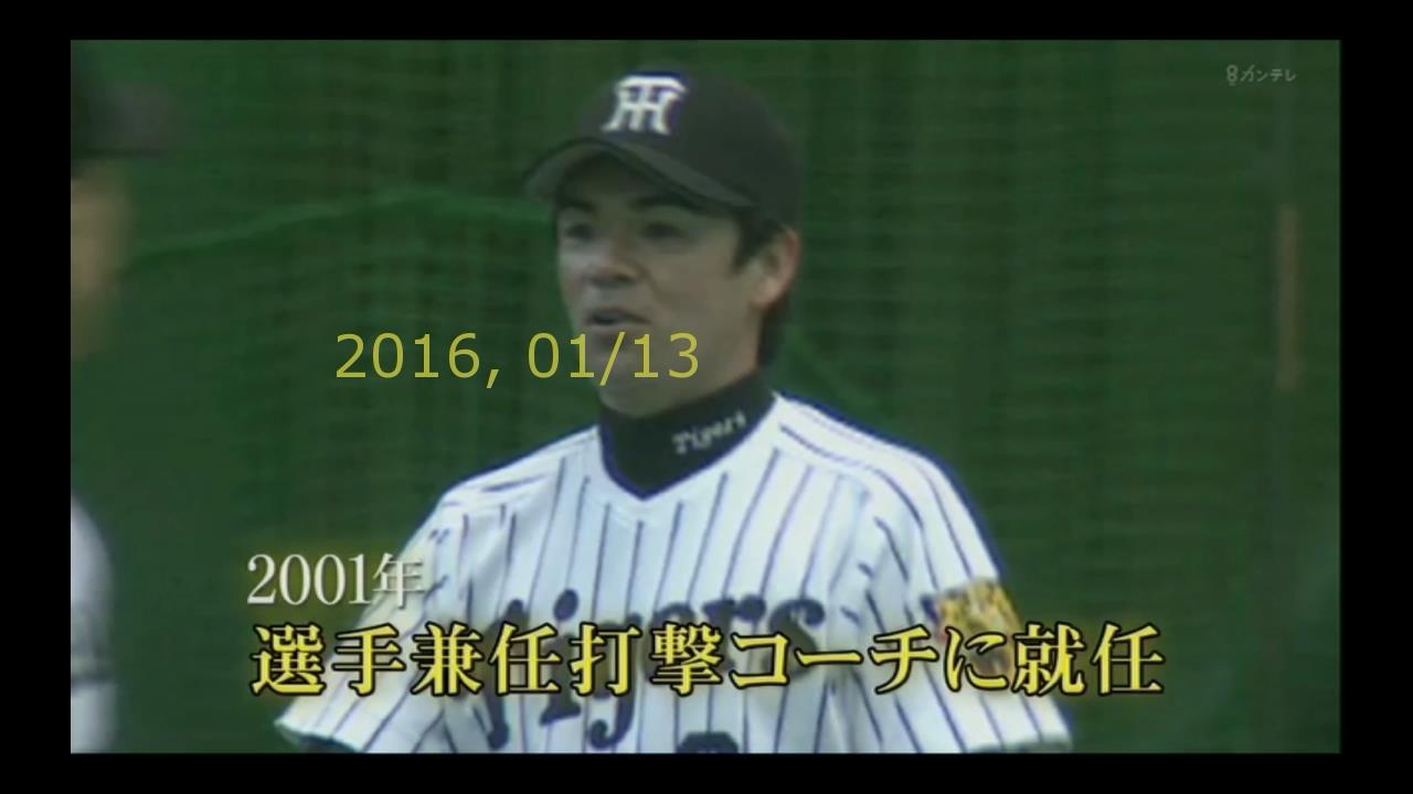 2016-0113-yoi-39