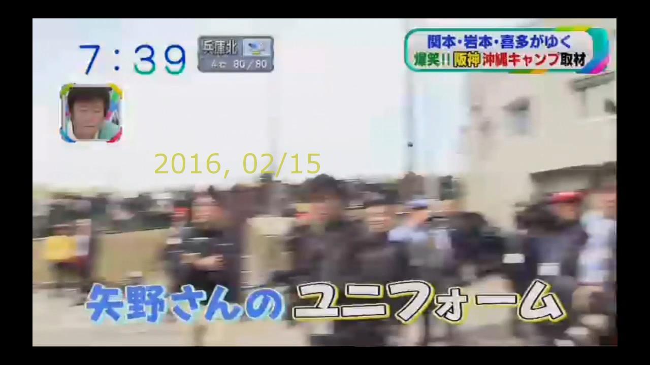 2016-0215-tv-55