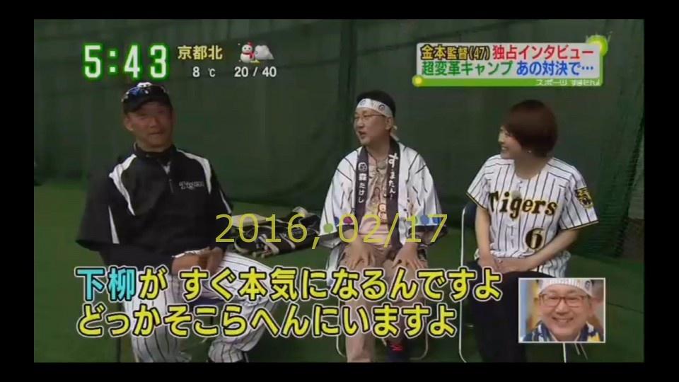 2016-0217-tv-11
