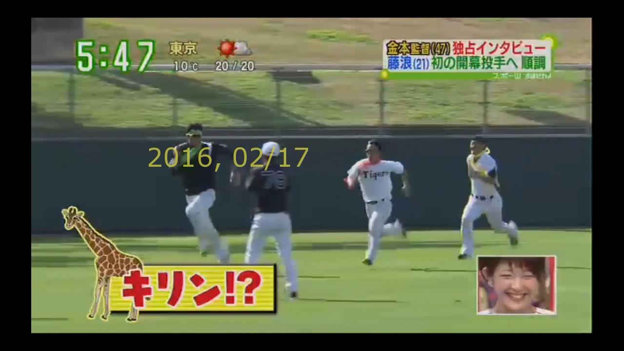 2016-0217-tv-45