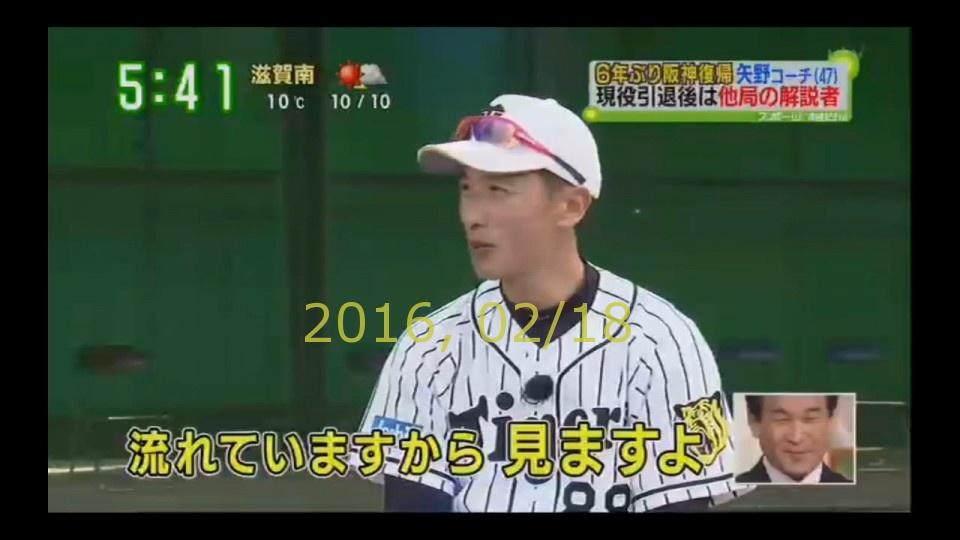2016-0218-tv-17