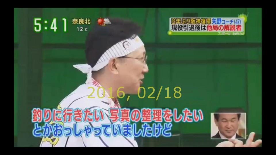 2016-0218-tv-19