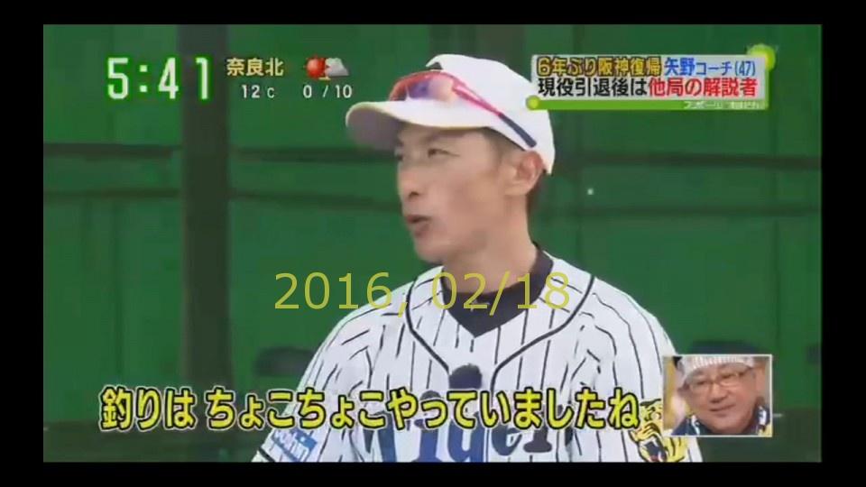 2016-0218-tv-20