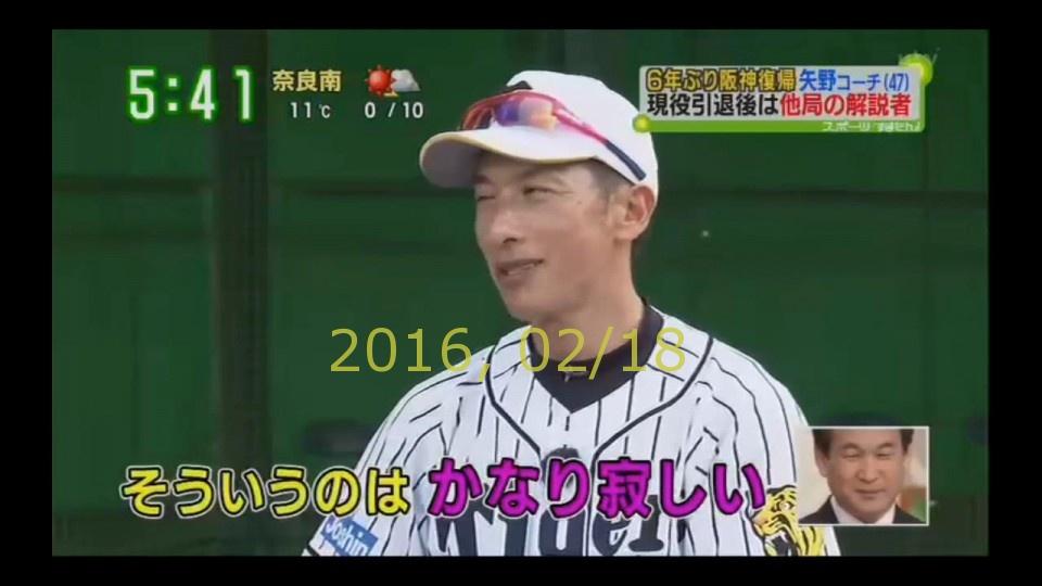 2016-0218-tv-22