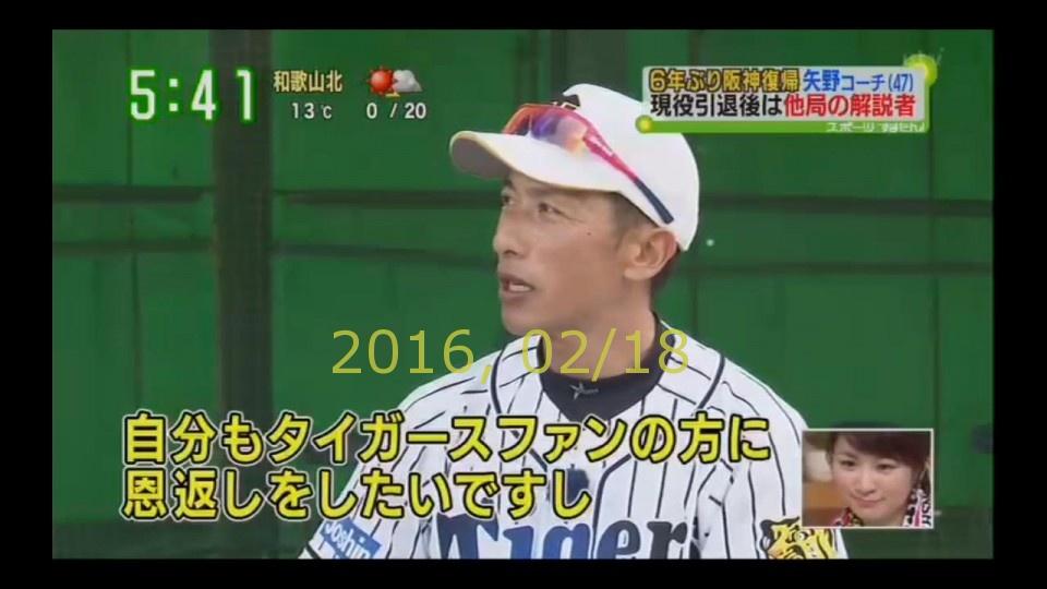 2016-0218-tv-24