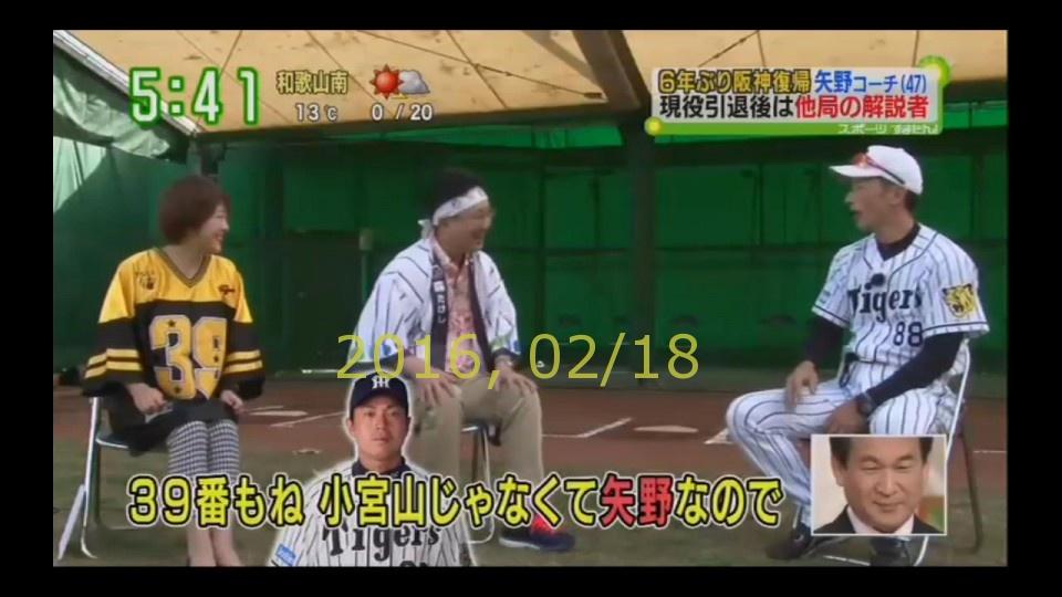 2016-0218-tv-26