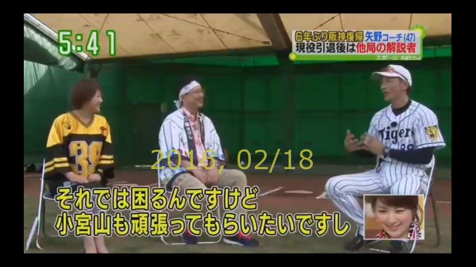 2016-0218-tv-27