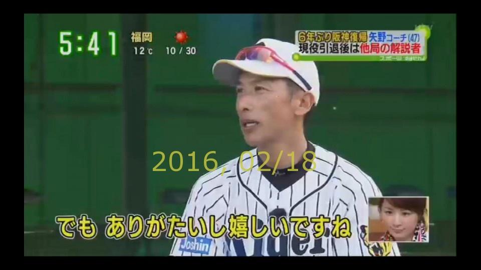 2016-0218-tv-28