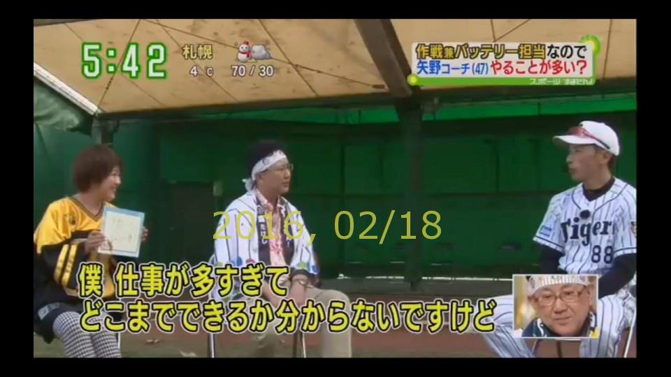 2016-0218-tv-31
