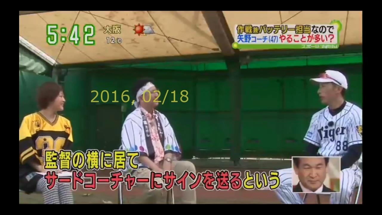 2016-0218-tv-32