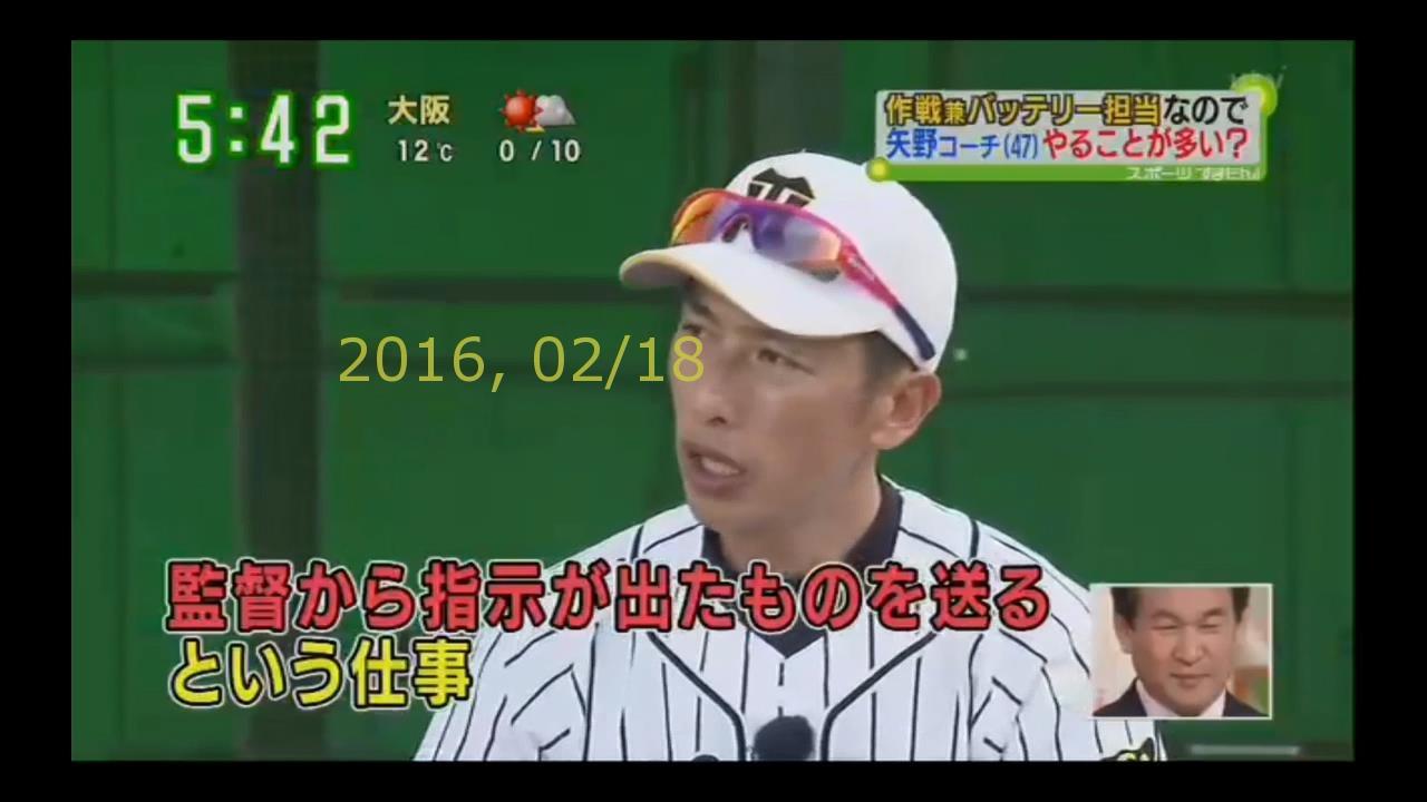 2016-0218-tv-33