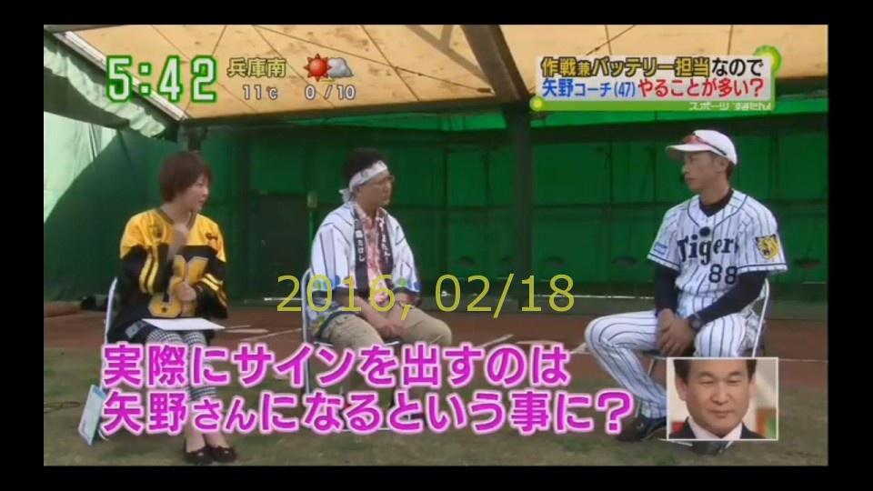 2016-0218-tv-35