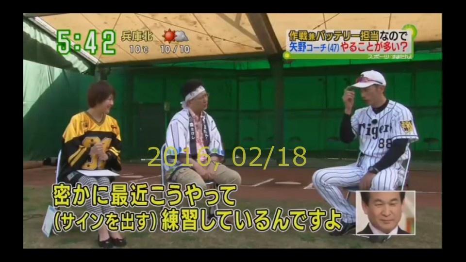 2016-0218-tv-36