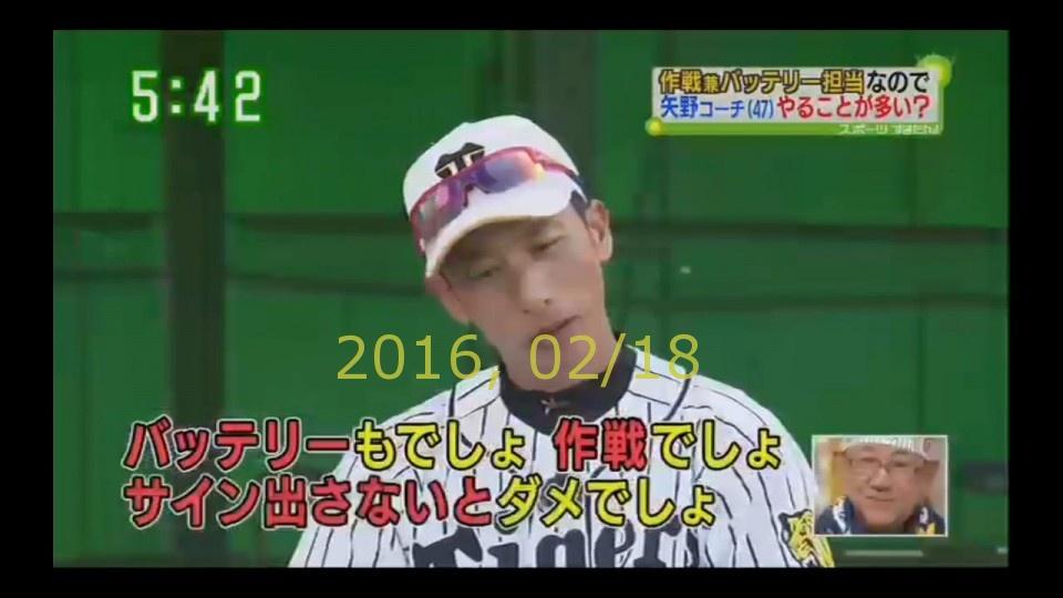 2016-0218-tv-38