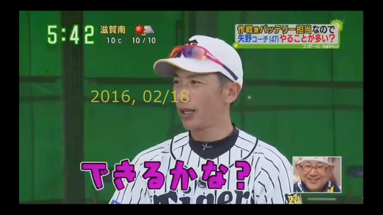 2016-0218-tv-39