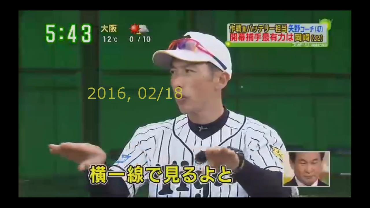 2016-0218-tv-51