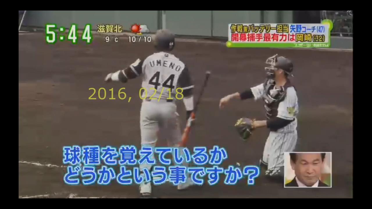 2016-0218-tv-66