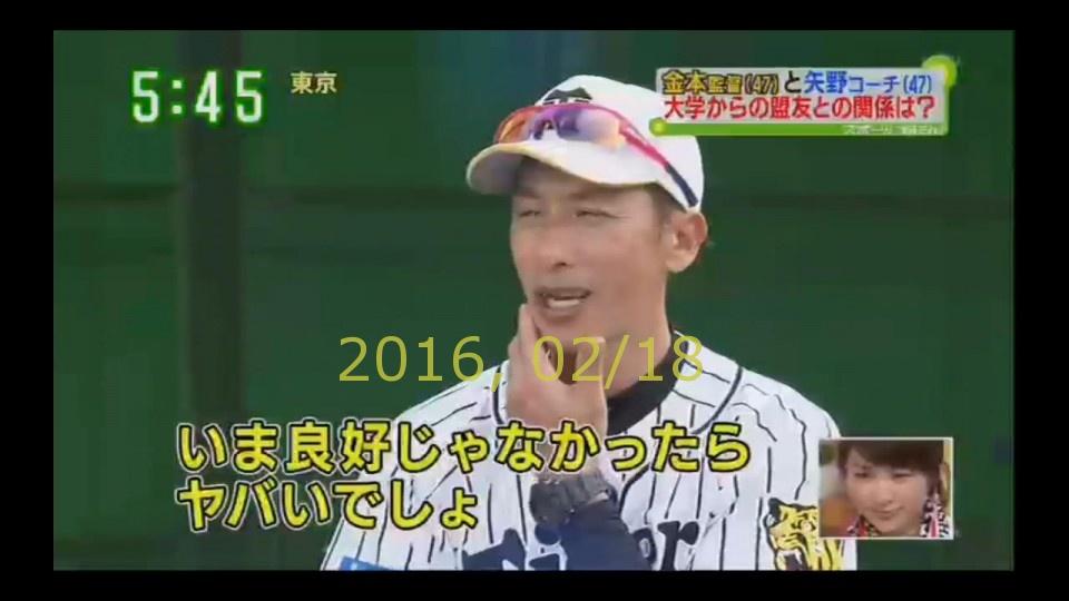 2016-0218-tv-75