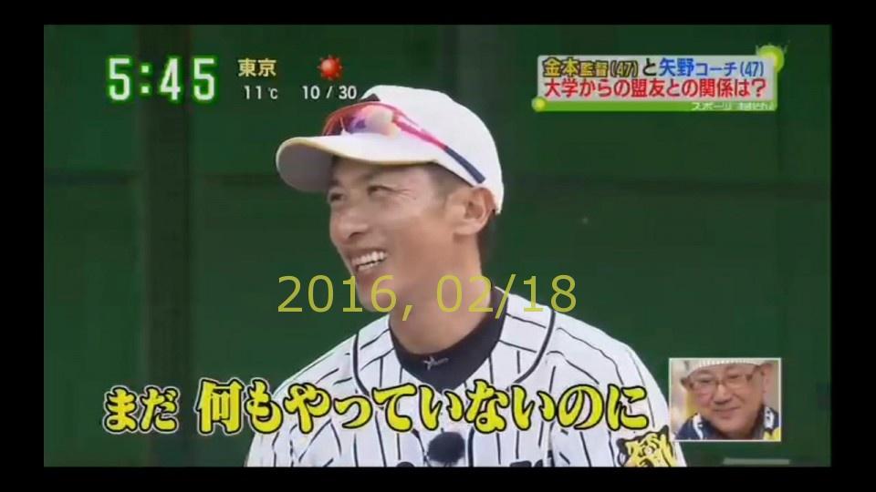 2016-0218-tv-76