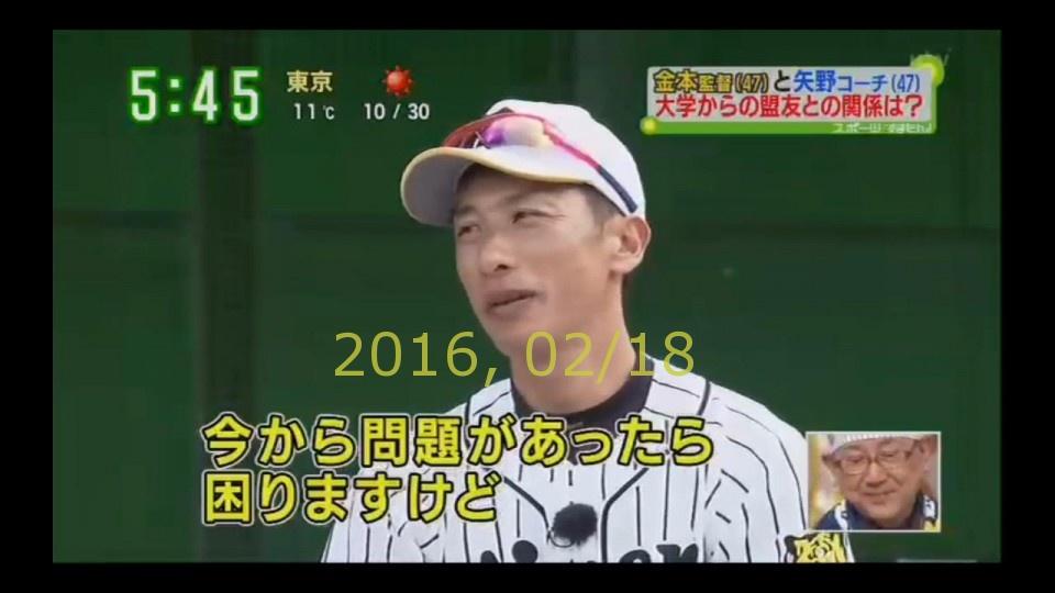2016-0218-tv-77
