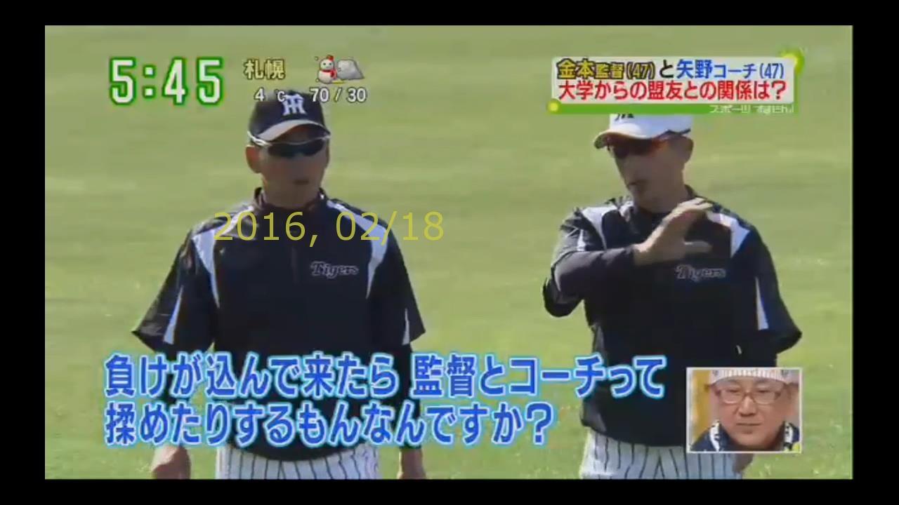2016-0218-tv-79