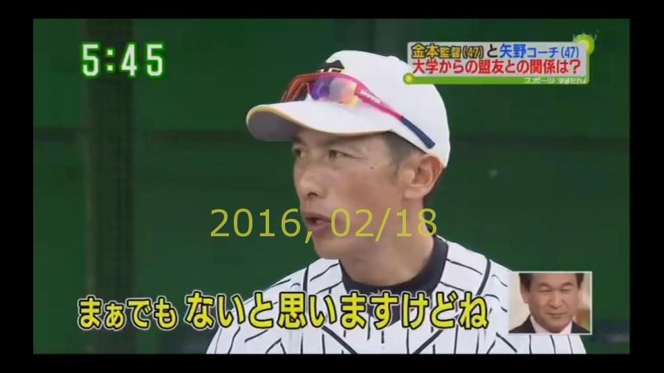 2016-0218-tv-80