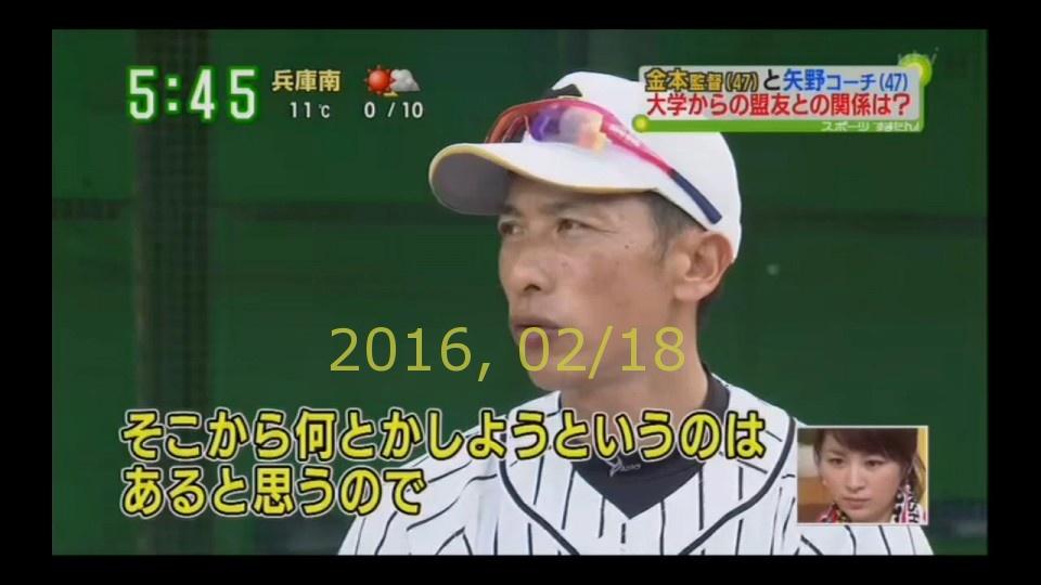 2016-0218-tv-81