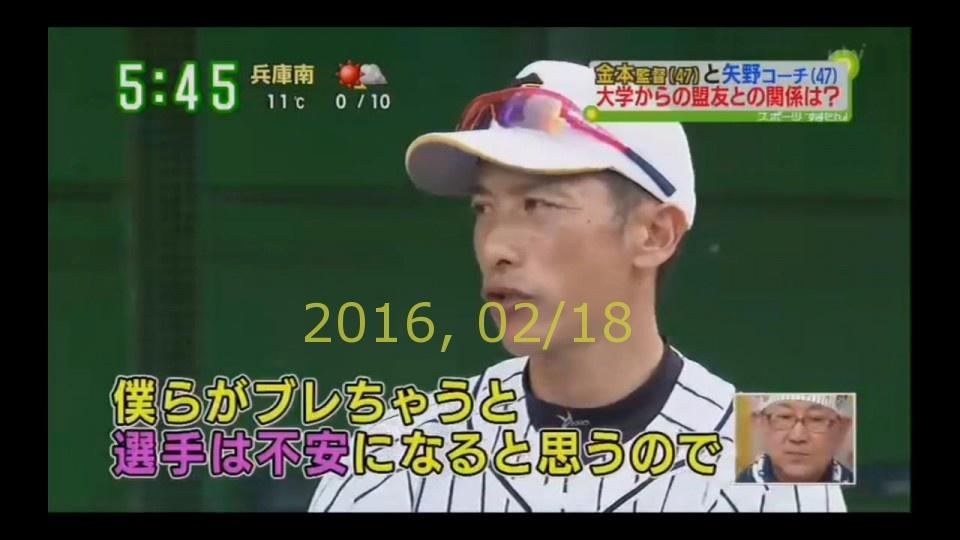 2016-0218-tv-83