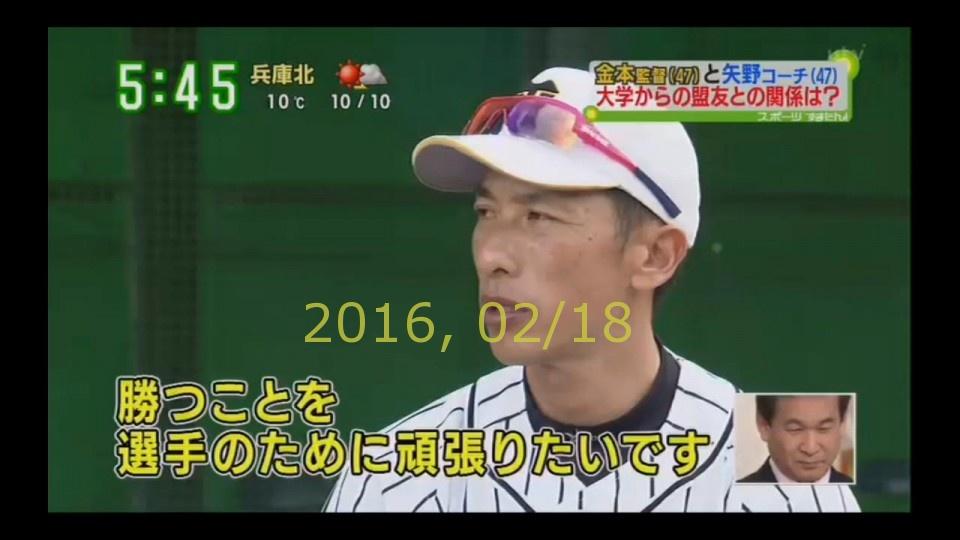 2016-0218-tv-84