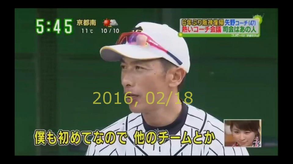 2016-0218-tv-86