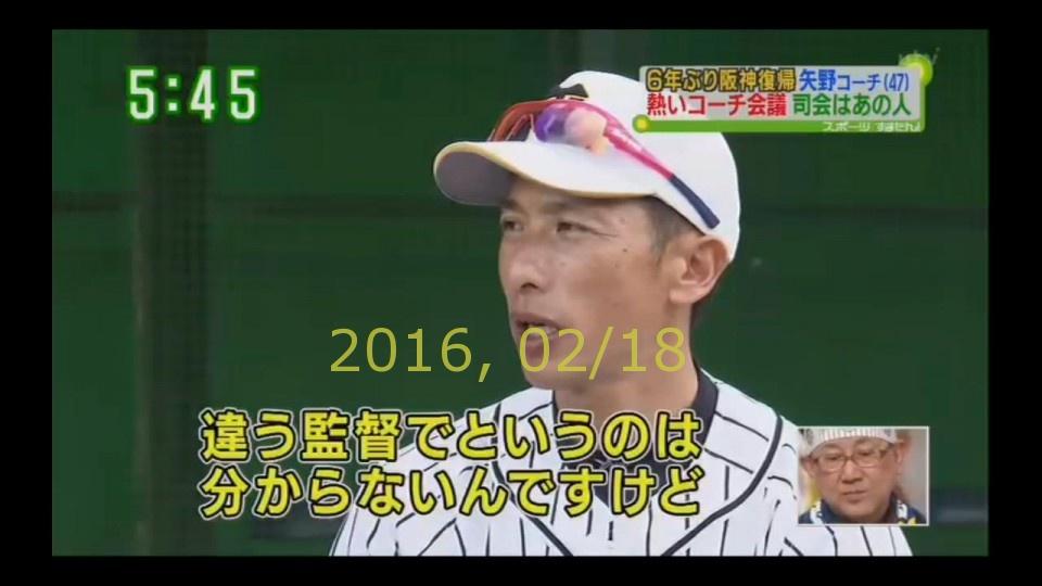 2016-0218-tv-87
