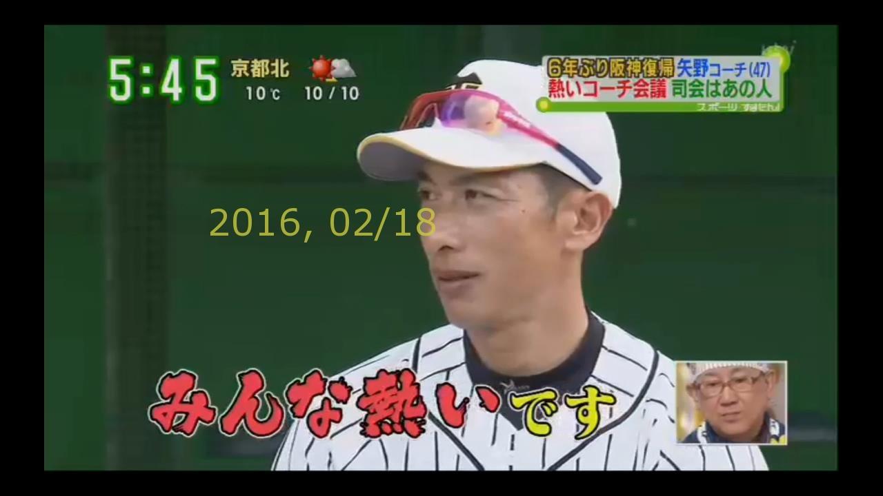 2016-0218-tv-88