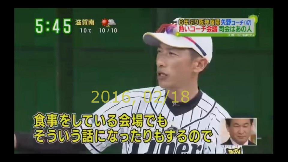2016-0218-tv-91
