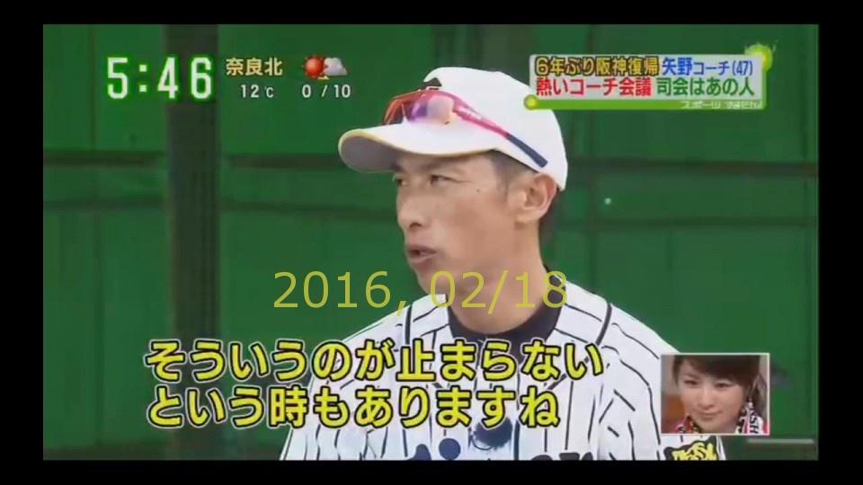 2016-0218-tv-93
