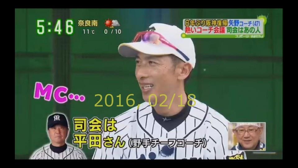 2016-0218-tv-95