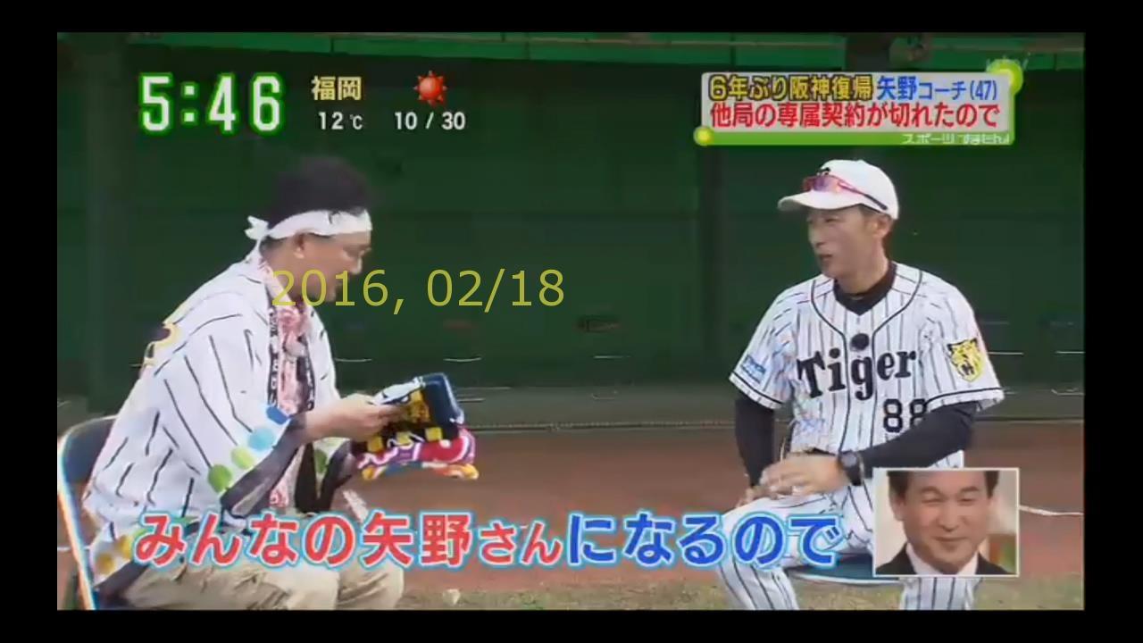 2016-0218-tv-98