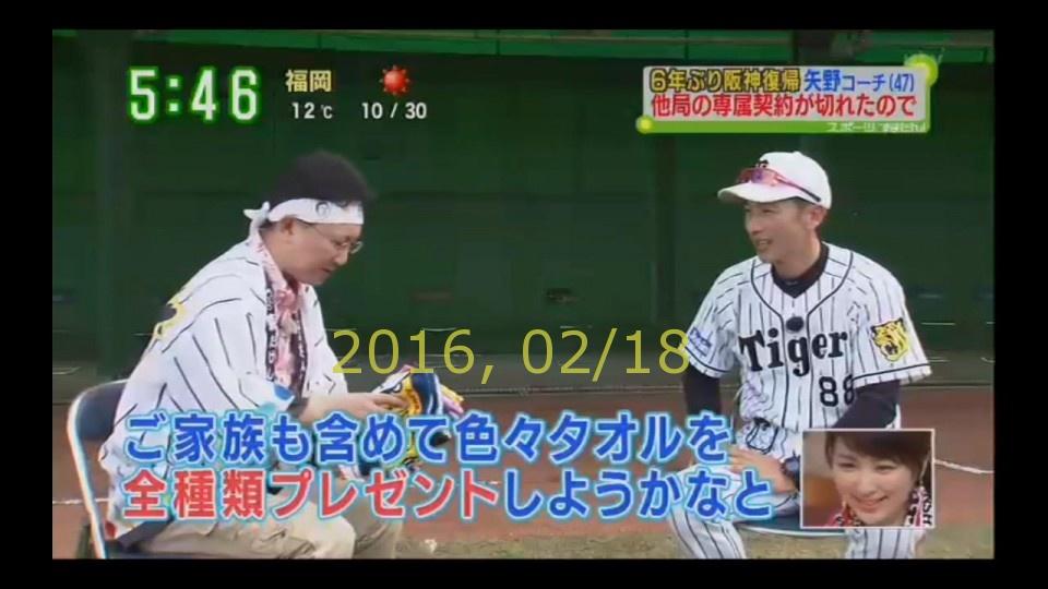 2016-0218-tv-99