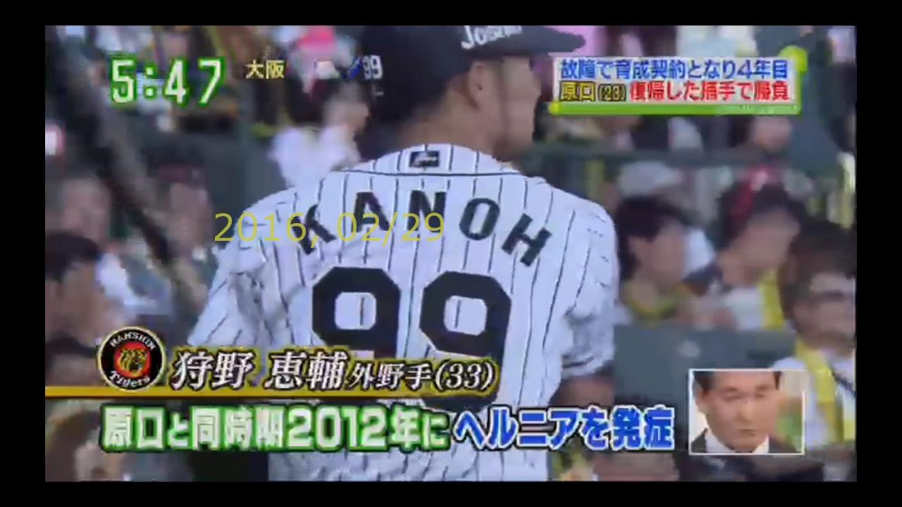 2016-0229-33